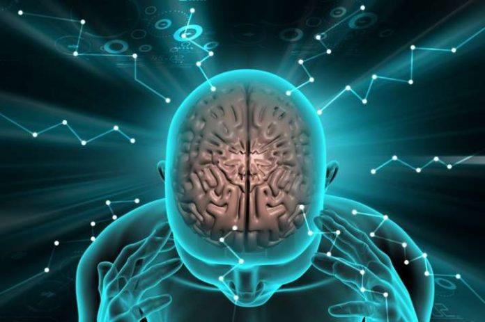brain cells brave 1536339159