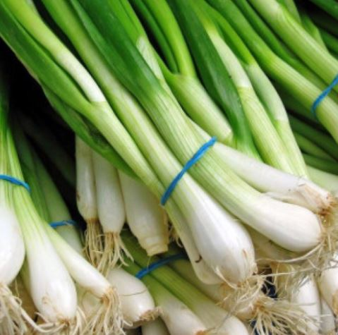 benefits of spring onion pinkstea 1