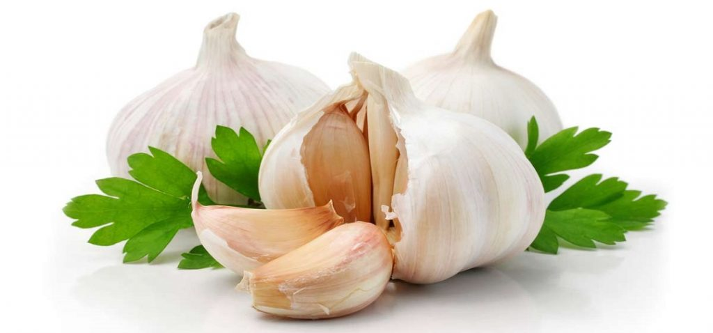 what is garlic in hindi
