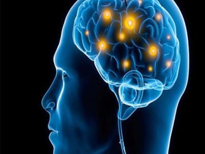 brain ear1 20181265845