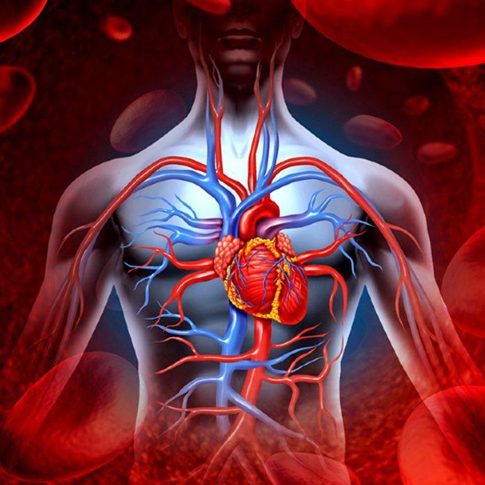 heart 1610956966