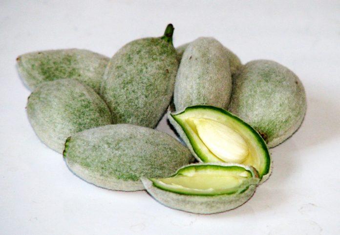 970px Green almonds