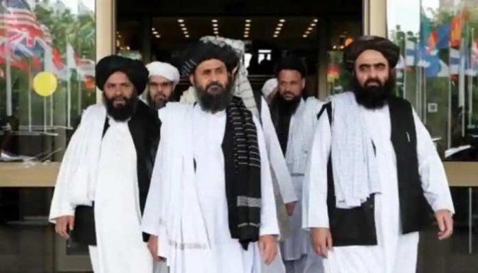 793590 taliban